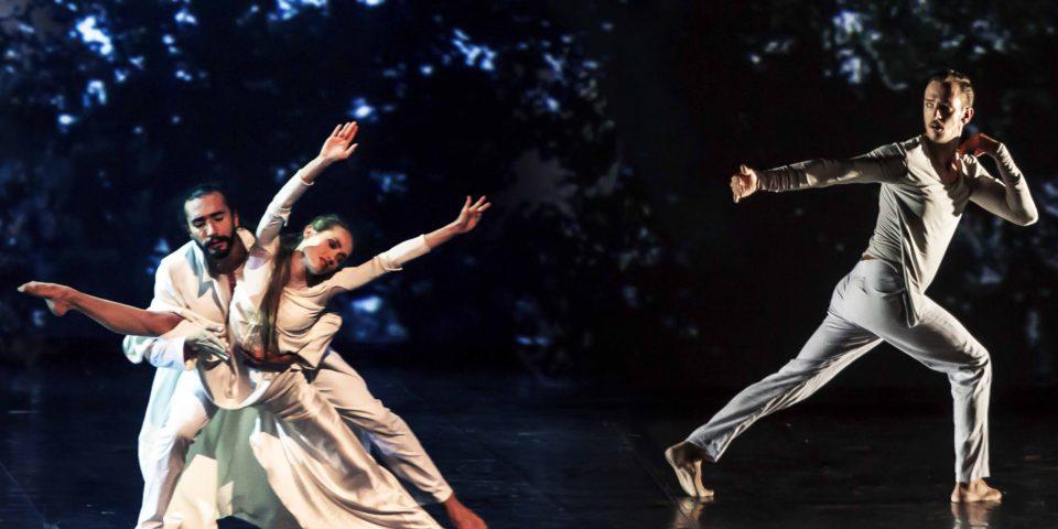arbre-caire-3-danseurs